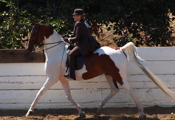 Horse Show 2013-08-03