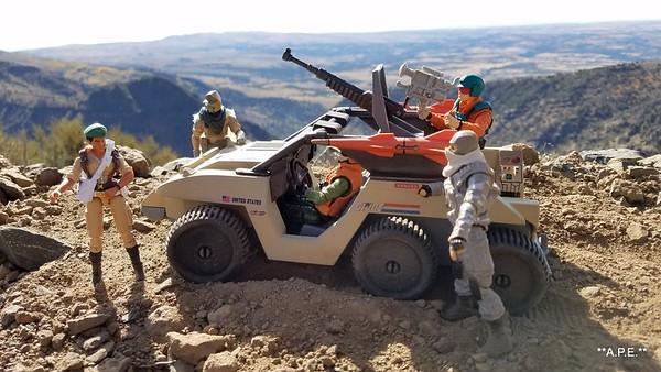 """DESERT FOX 6X6 STEENS MT. SCENE """"1"""""""