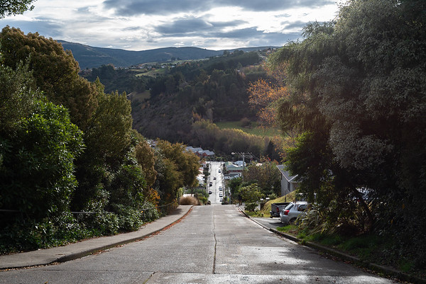 Baldwin Street, World's Steepest Street