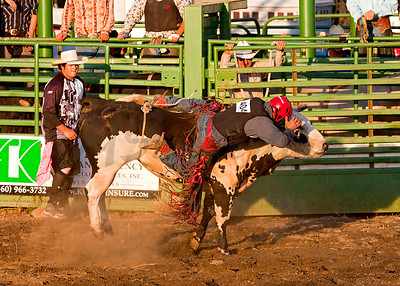 Bull-A-Rama-07-10-2010