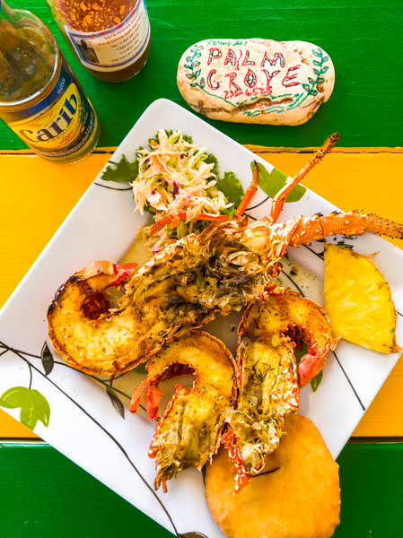 anguillan lobster and crayfish.jpg