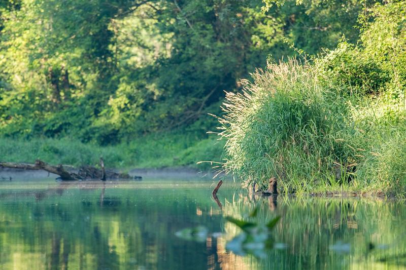 2019-07-12 NJ-Kayaking Wallkill River-DSC_6468-002.jpg