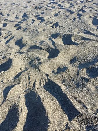 Beach Brookings