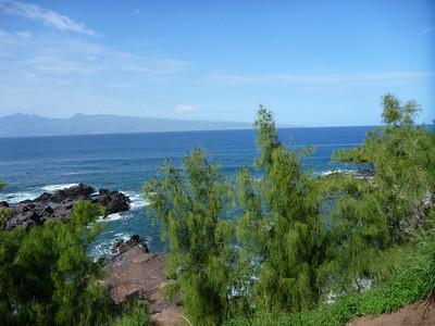 Maui 11