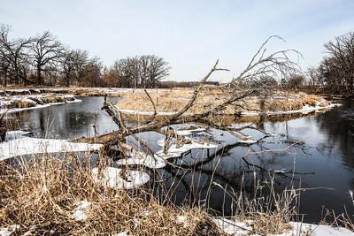 20150128 - Nippersink Creek (SN)