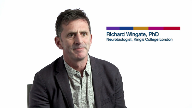 Society for Neuroscience - Meet The Researcher / Richard Wingate, PhD (2019)