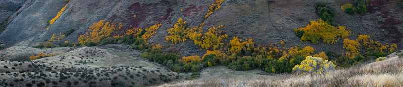 Shingle Creek, Boise Foothills - Idaho