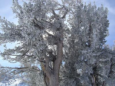 2007 - January Lake Tahoe