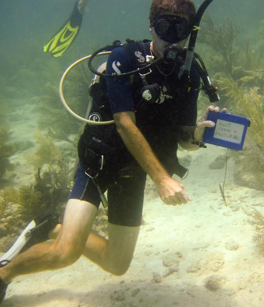 islamorada-diving-27.jpg