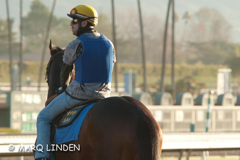 Santa Anita Shoot 12292011-067.jpg