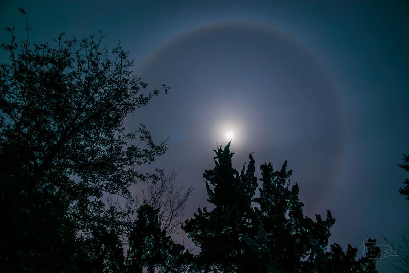 Circle around the moon