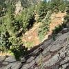 2019 0817 Kear Rock Climbing