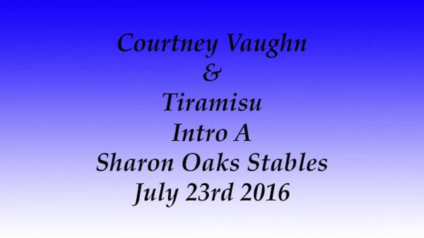 7-23-2016 Dressage At Sharon Oaks