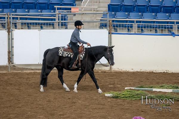 07 Open Trail Pony