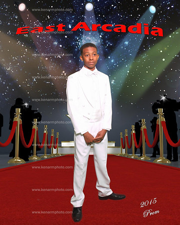 East Arcadia 2015 Middle school prom