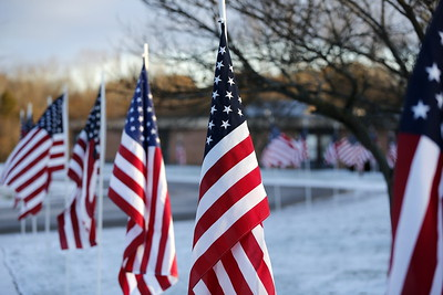 Daisy Brook - 11/10/2017 Veterans Day Recognition Program