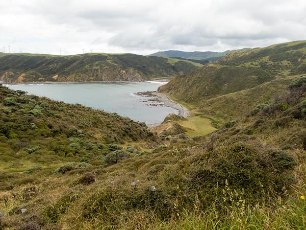 Makara Walkway Hike - Wellington
