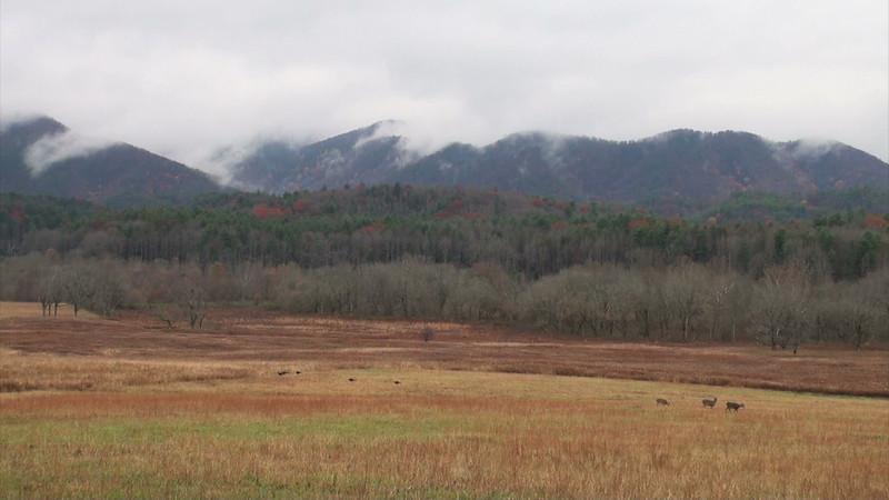 mountains_01.mov
