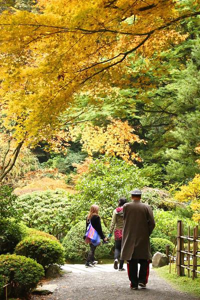 Portland Japanese Garden  11-11-11  3579.jpg