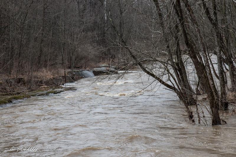 Black River flood 022218-3.jpg