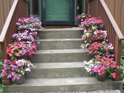Flower Garden - 7/23/2006