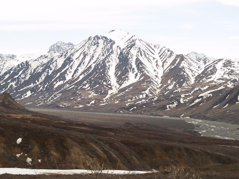 Polychrome Pass, Denali National Park, May 2007.