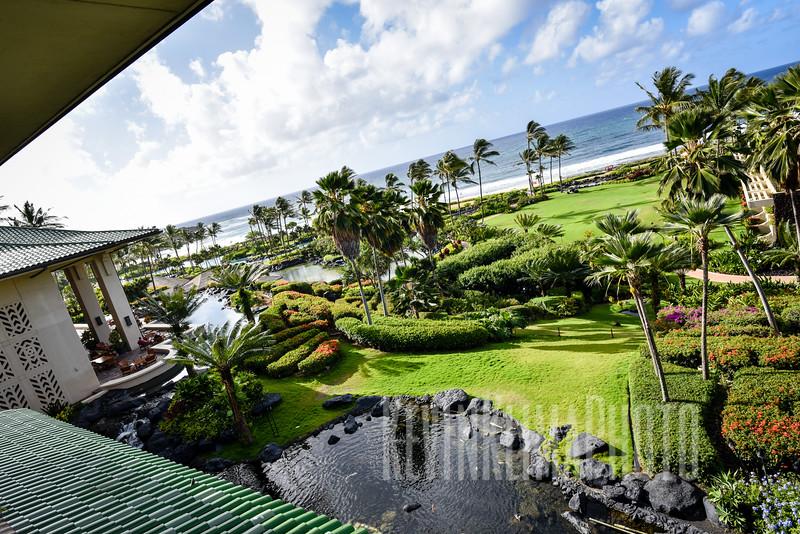 Kauai2017-341.jpg