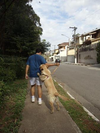 2011-09-Cachorro do Zé Pereira
