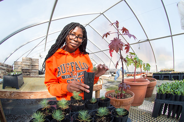 10/21/19 EURO Student Researcher Laquesha Phillips Working in Greenhouse