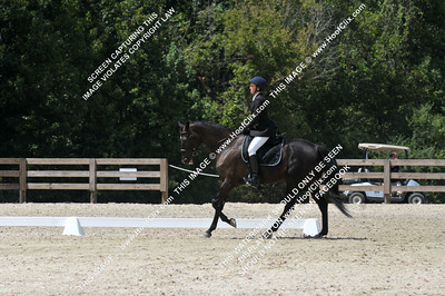 Lolly	Perry	riding	Louie  VIII	#	338