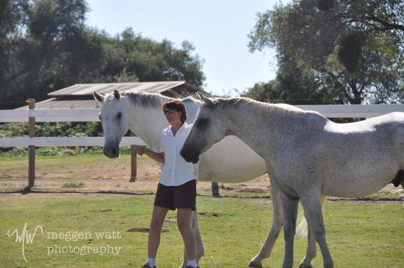 EB&Horses-149.jpg