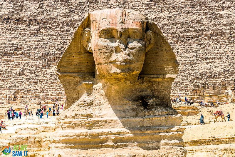 Sphinx-01848.jpg