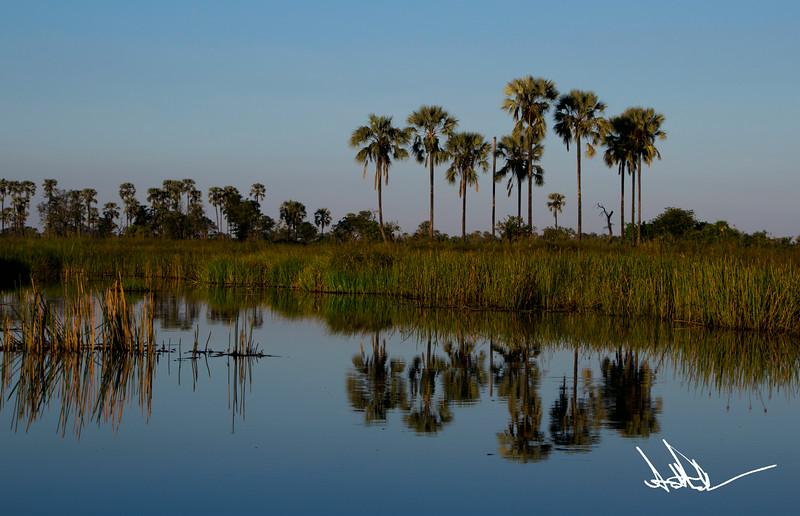 Botswana LandscapeS-17.jpg
