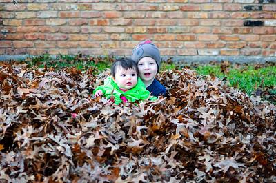 2013-12-17 - Raking Leaves
