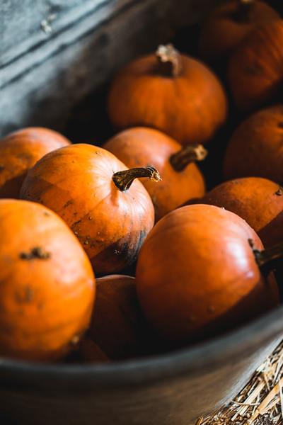 heap-of-pumpkins-in-a-metal-bath-picjumbo-com.jpg