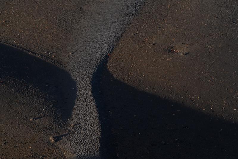 Landscape: Cinder Cone   Lassen Volcanic National Park
