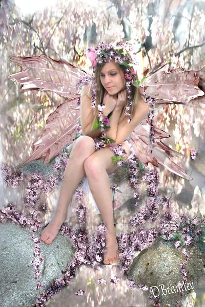 amber fairy.jpg internet.jpg