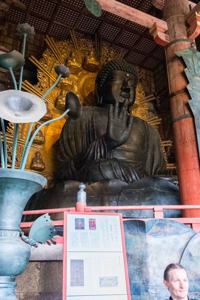 Nara Day 5 (250 of 374).jpg