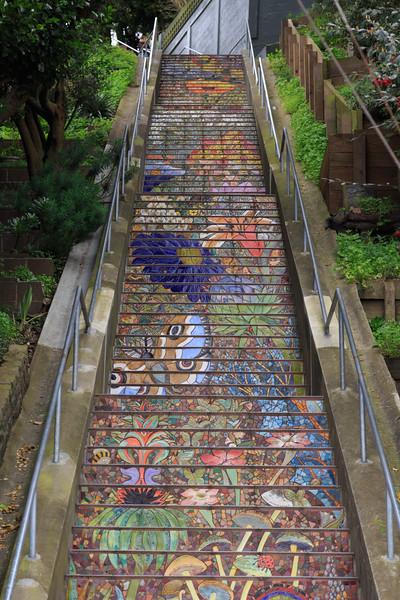 20170320 - San Francisco Hidden Garden Steps 001.jpg