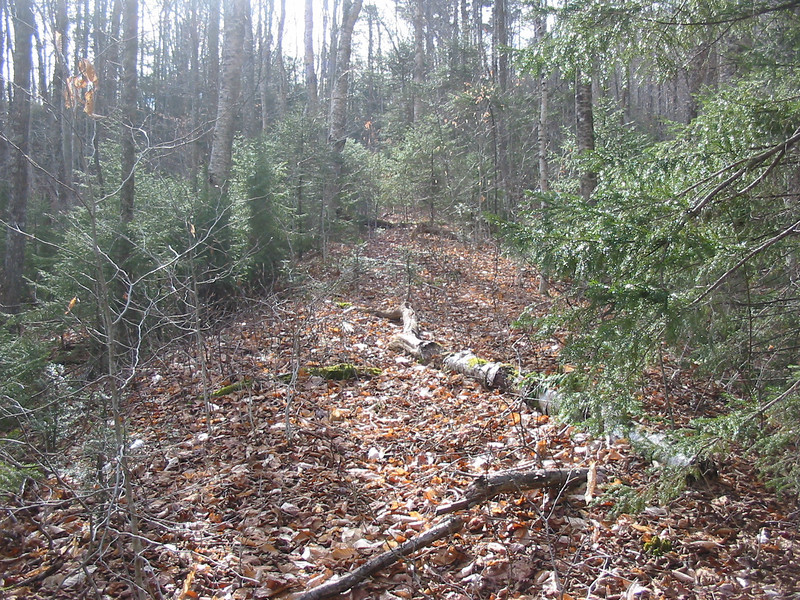 And the railroad bed is easily found.JPG
