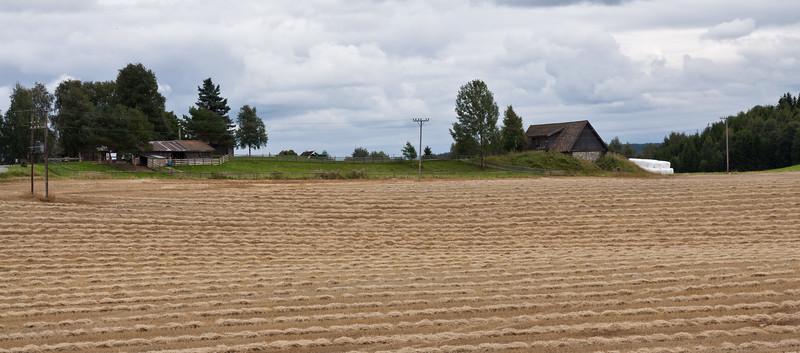 Høst2010-102