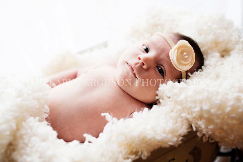 Hillary_Ferguson_Photography_Carlynn_Newborn182.jpg