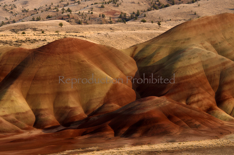 Ancient Land Painted Hills National Monument, OR. September 2102