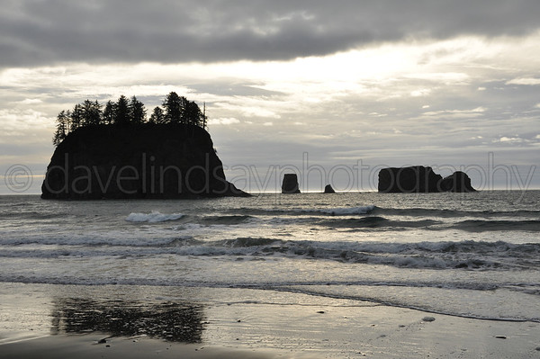 Olympic Peninsula & Wasington Coast - December 2014