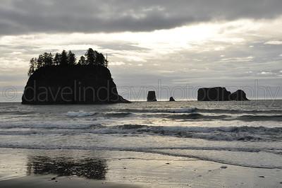 Olympic Peninsula & Wasington Coast - December 2014