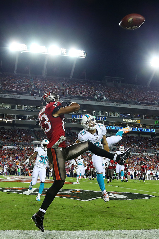 . Brent Grimes #21 of the Miami Dolphins breaks up a pass intended for  Vincent Jackson #83 of the Tampa Bay Buccaneers in the first quarter at Raymond James Stadium on November 11, 2013 in Tampa, Florida.  (Photo by Mike Ehrmann/Getty Images)
