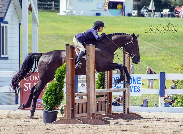 Ludwig's Corner Horse Show 2016