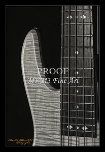 Vic Wooten Classic 5 String in BW 1951