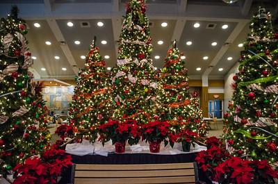 2014-12-13 - Good Neighbor Weekend Christmas Store