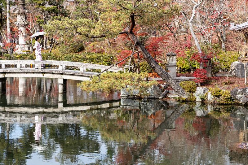 Kyoto12052018_261.jpg